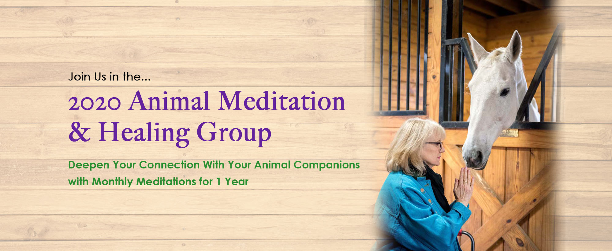 2020-animal-meditation-healing-group